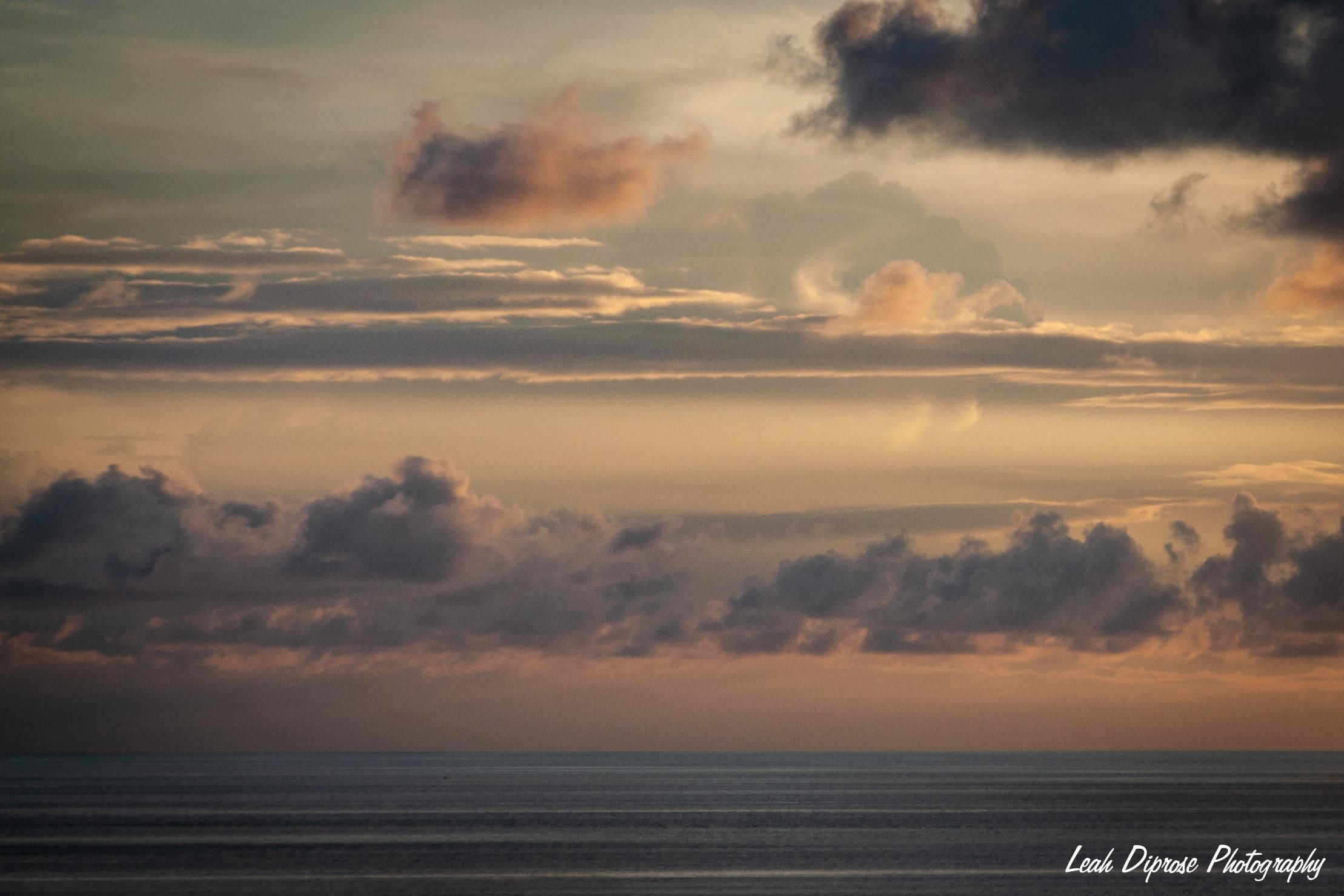 Leah Diprose Photography image-7353.jpg