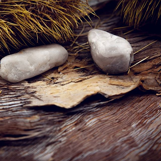 G A T H E R    bits and piece gathered on my morning walk 🌾🍃🍂 #bondi #morningwalk #explore #create #australiana #paperbark #bondiphotographer