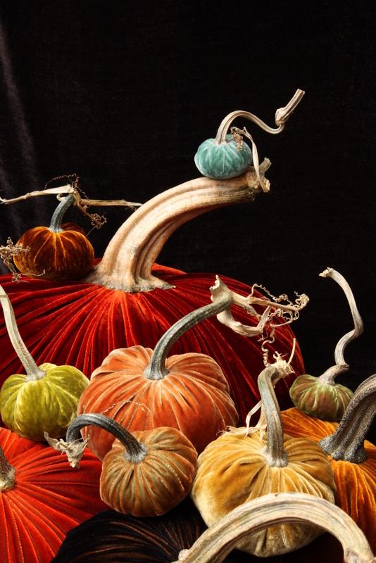 big red group best velvet pumpkins hot skwash may.jpg