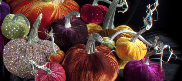 Hot Skwash Full pumpkin collection IMG_9089.jpg