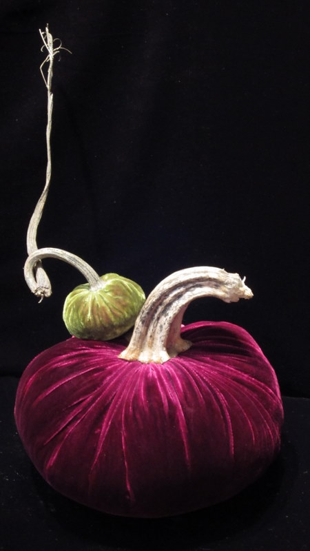 hot skwash velvet pumpkins purple and green.jpg