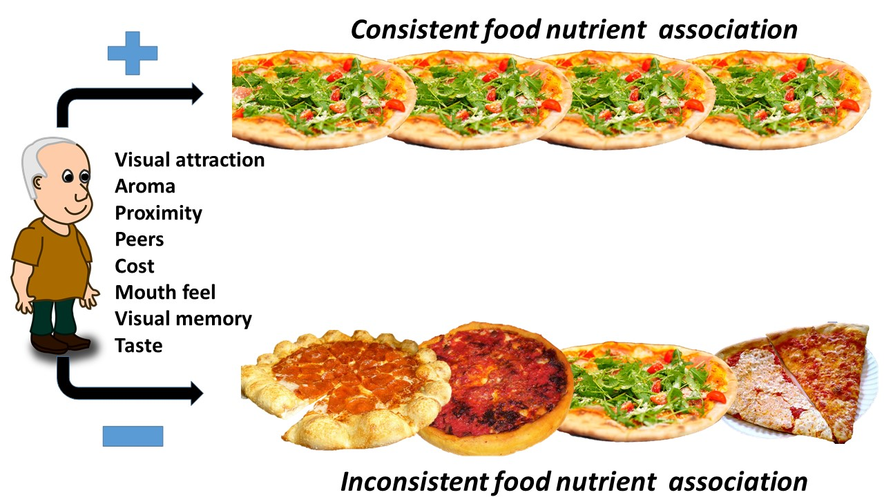 This schematic shows that our friend will achieve consistent food nutrient associations if he eats the same kind of pizza for one of his meals everyday. On the bottom half, we see that choosing different styles of pizza lead to inconsistent food nutrient association. This inconsistent food nutrient association may lead to overeating and contribute to weight gain over time.