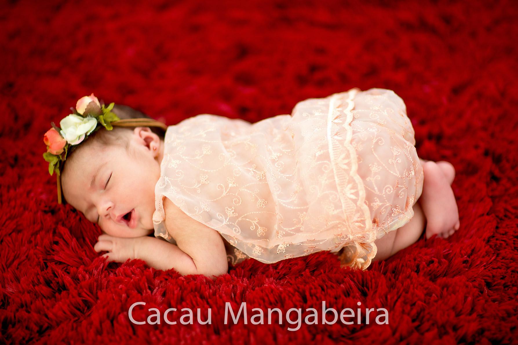 livia-cacaumangabeira