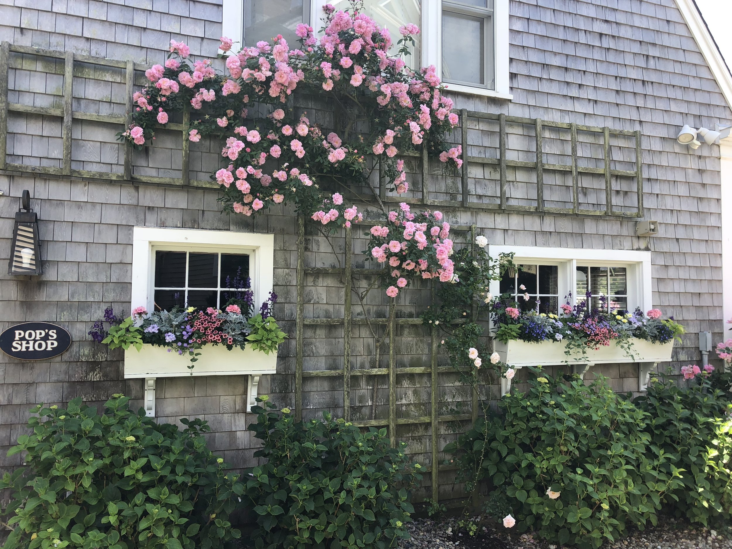 A garden in Yarmouth. View gallery (2)