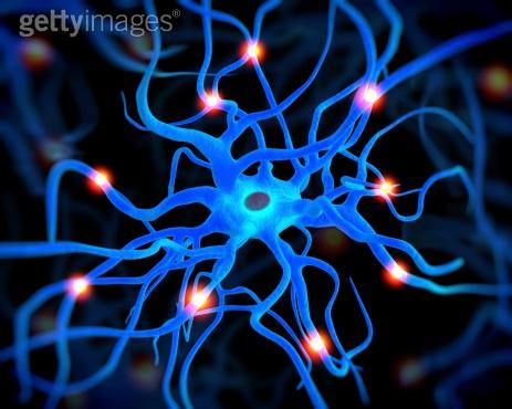 Neuron 1 getty.jpeg