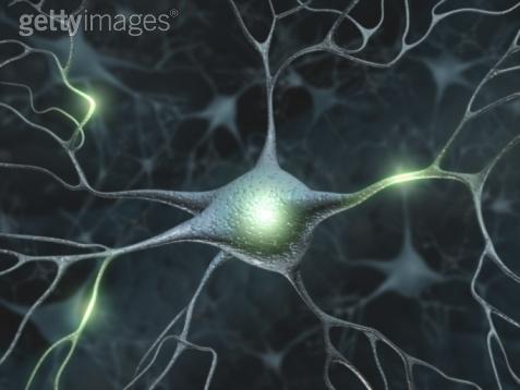 Neuron 5 Getty.jpeg