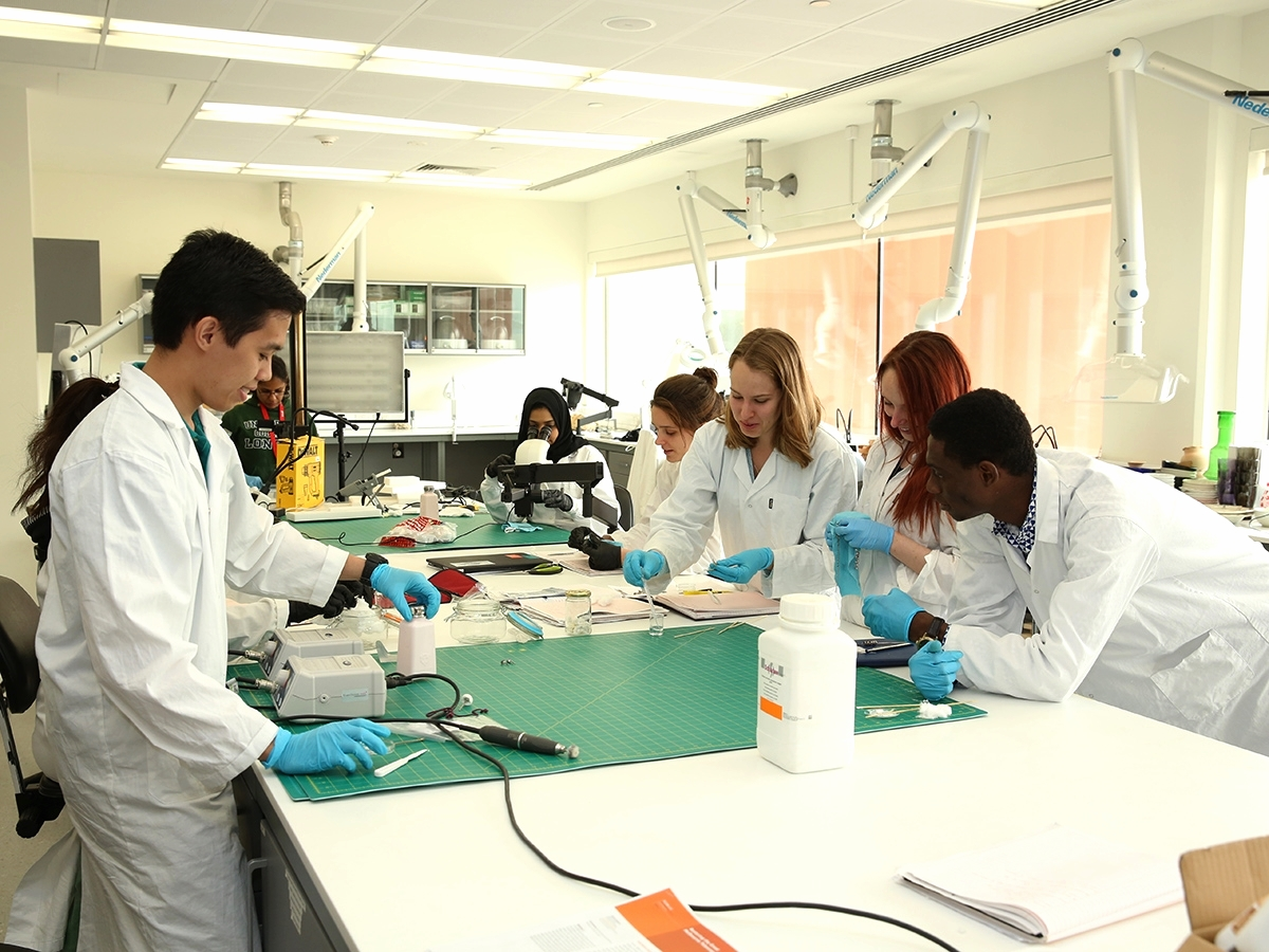 A substantial part of the MSc Conservation Studies curriculum focuses on practical work in the labs, covering a wide range of materials, from objects to textiles and contemporary art.
