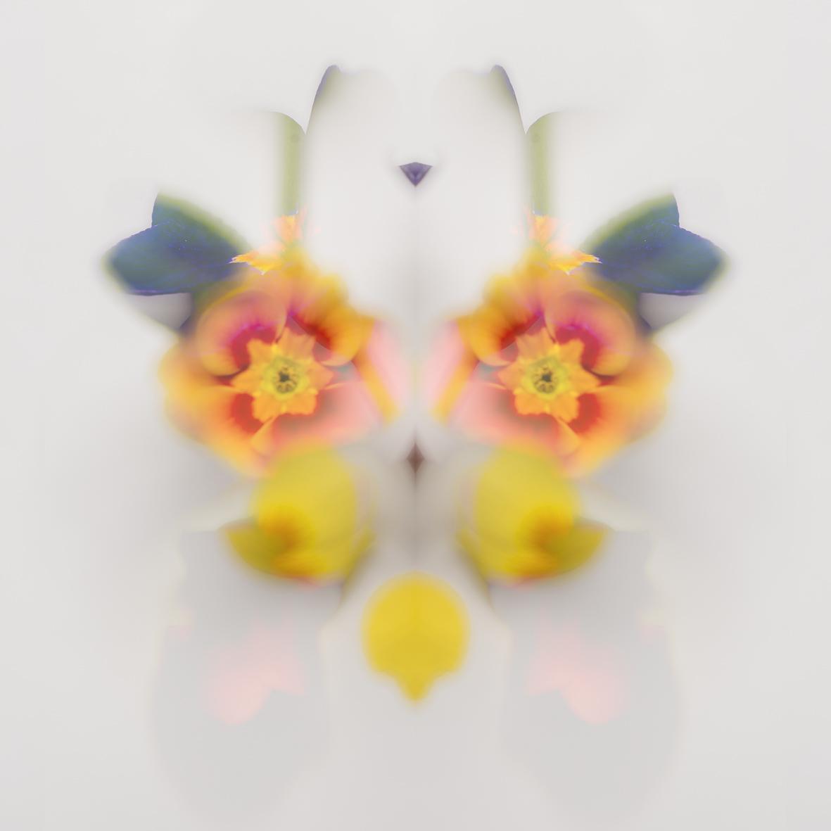 Rorschach Blumen 5.jpg