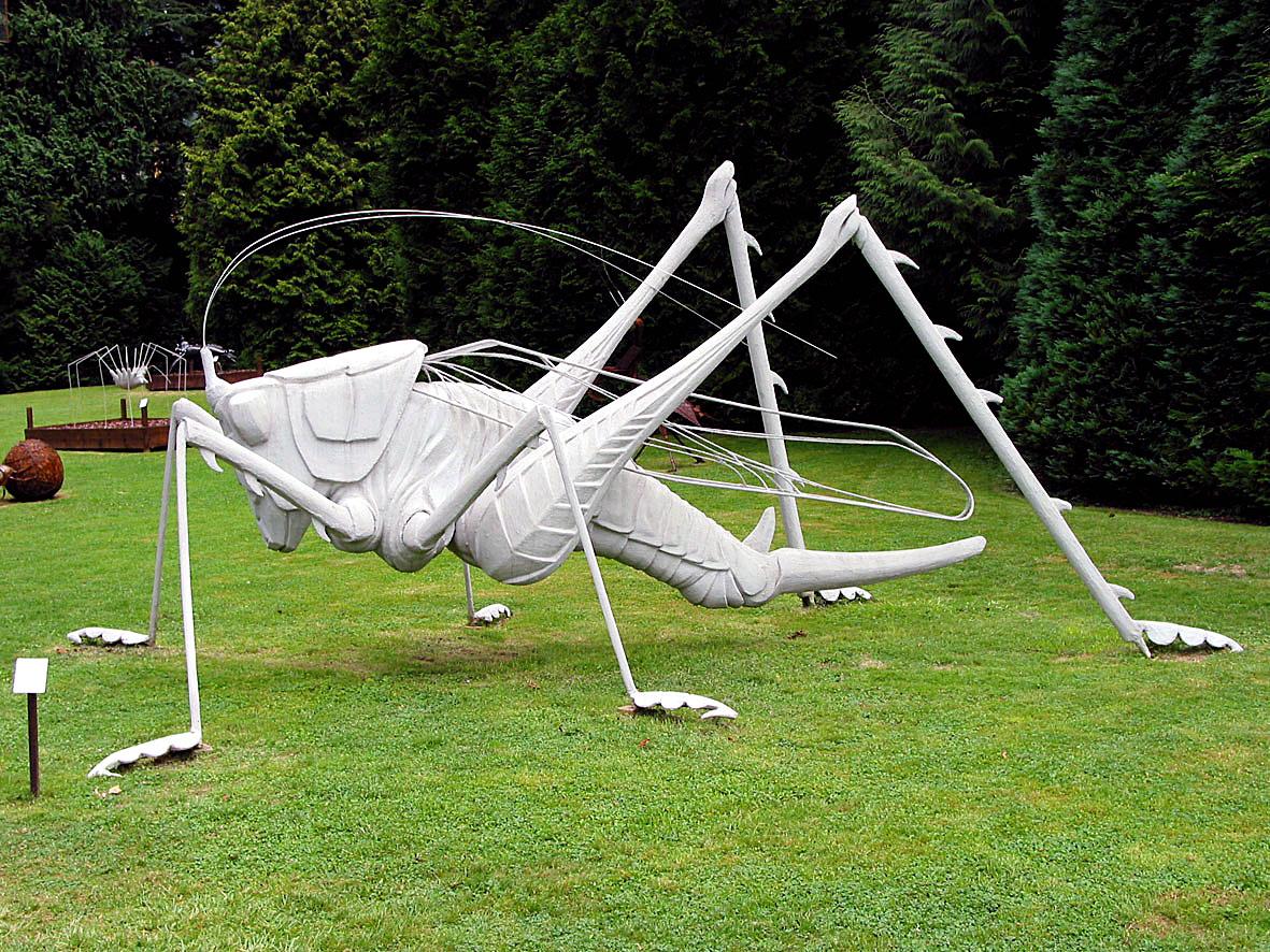Grosses Heupferd,Installation, jörg rohner, 2004