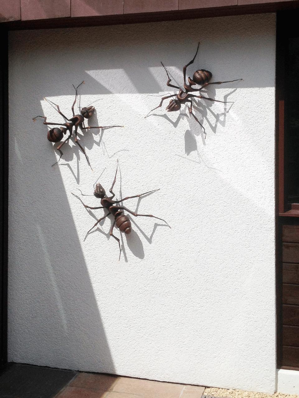 Mehr Ameisen im Anmarsch