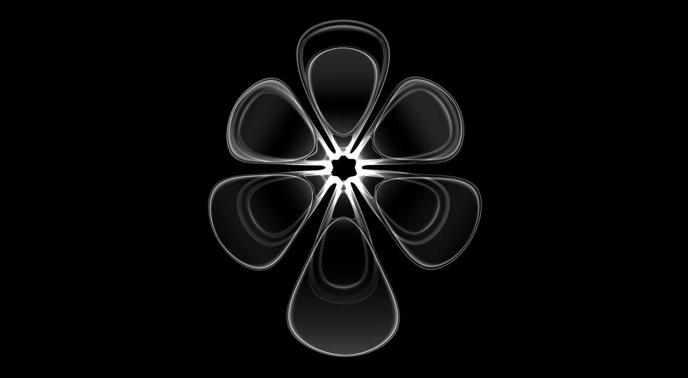 PHYLUM_4.jpg