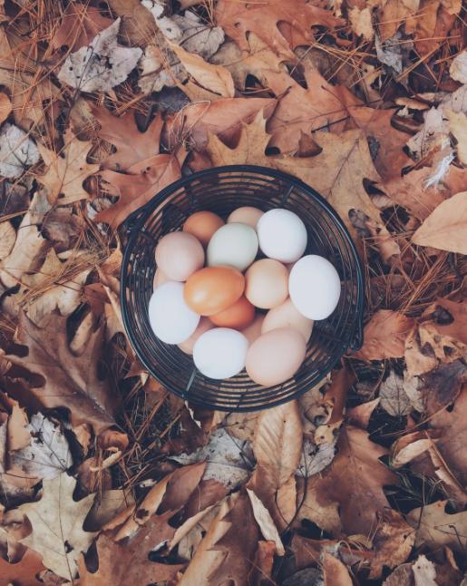Eggs -we don't need 'em! Image via Unsplash.com