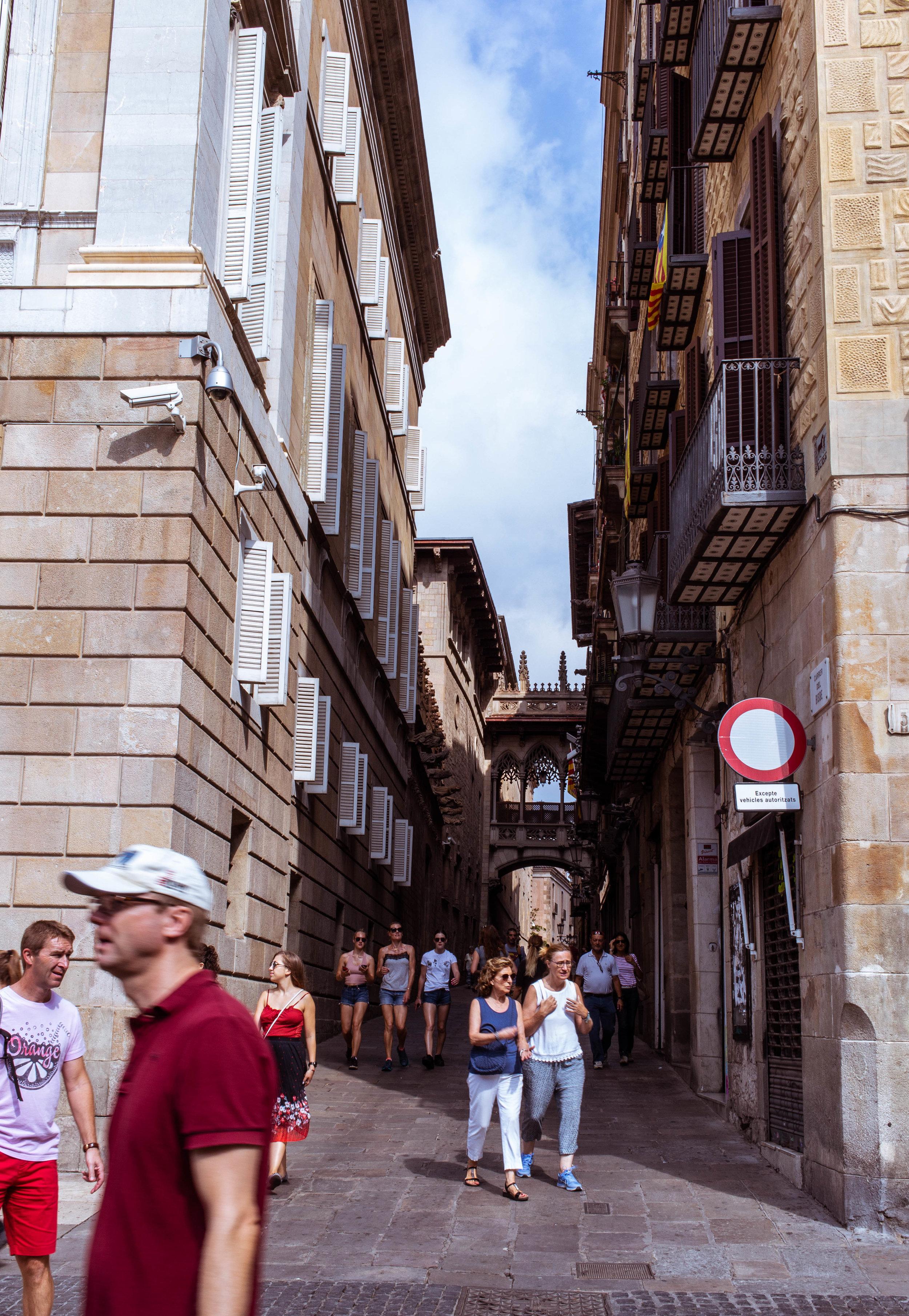 tourists (1 of 1).jpg
