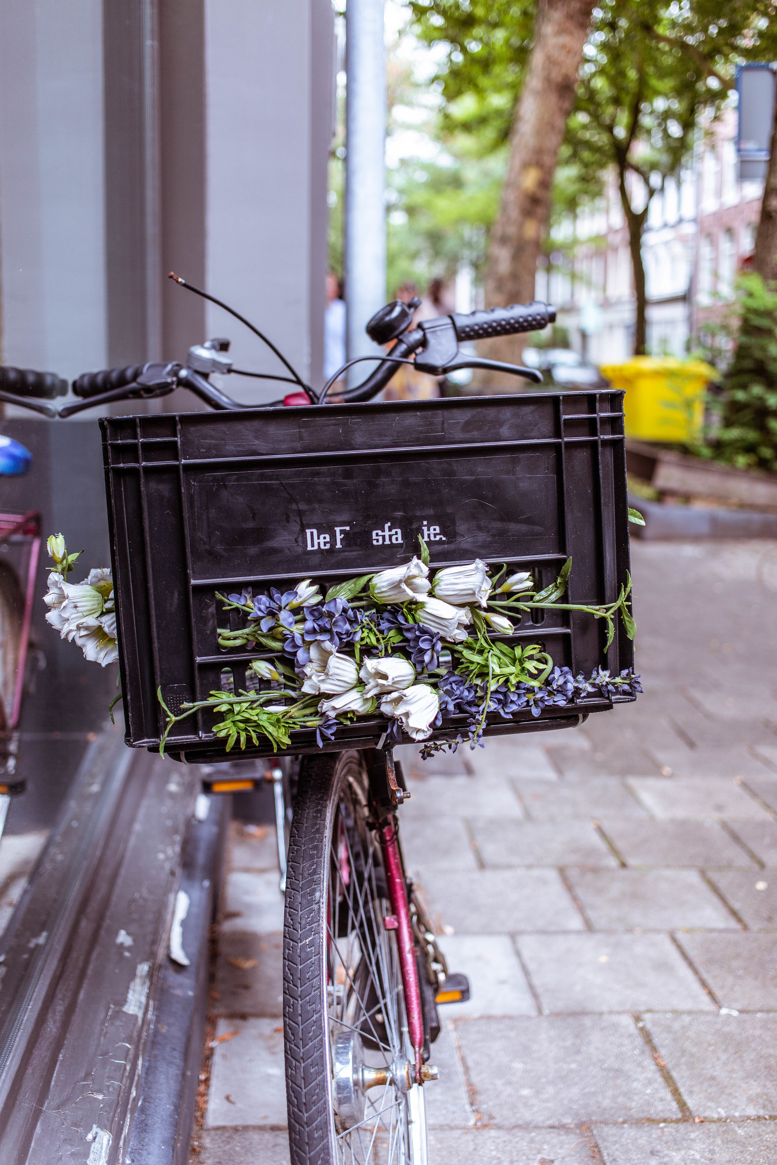 flower bike (1 of 1).jpg
