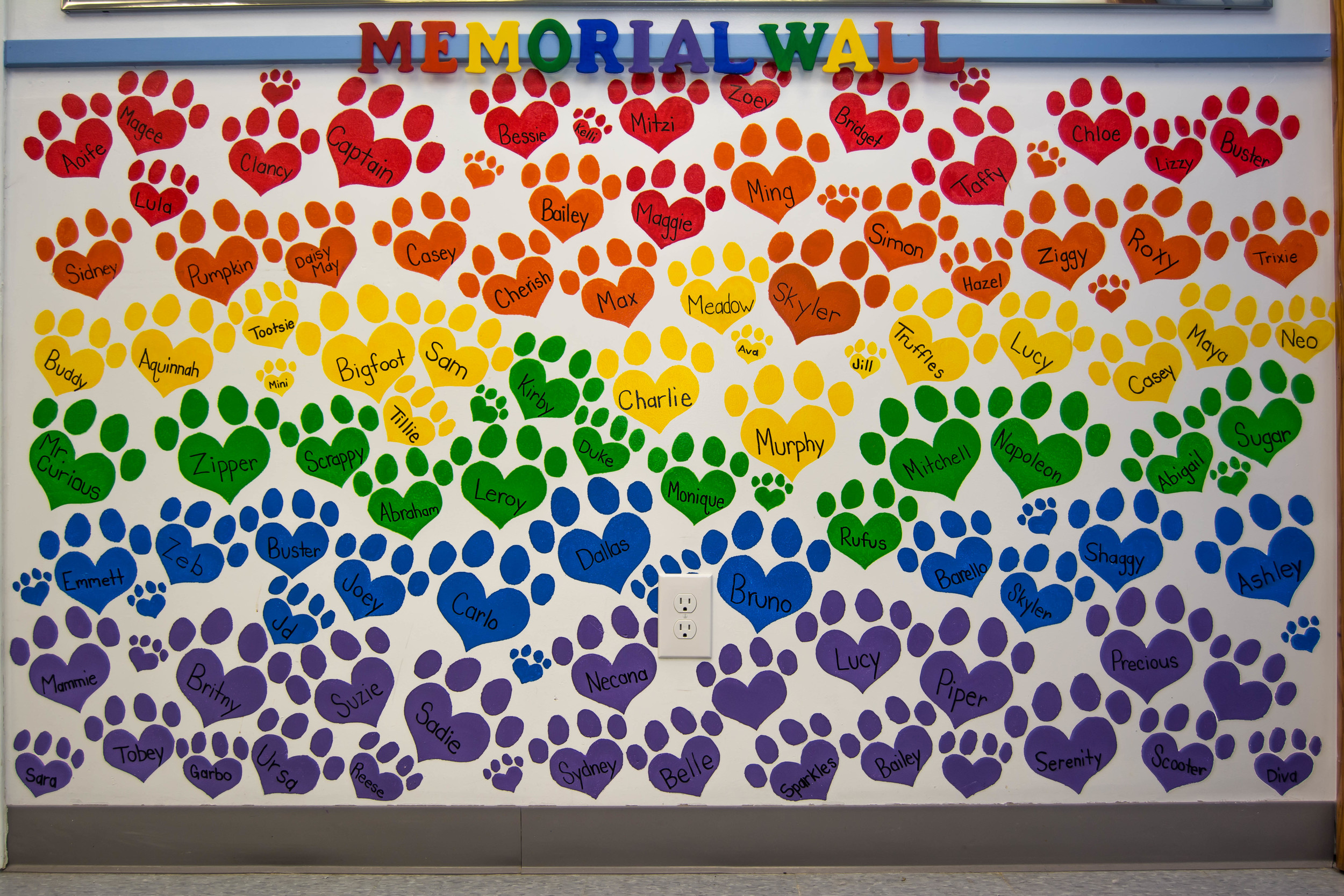 Memorial Wall of all the dogs that have crossed over to the Rainbow Bridge