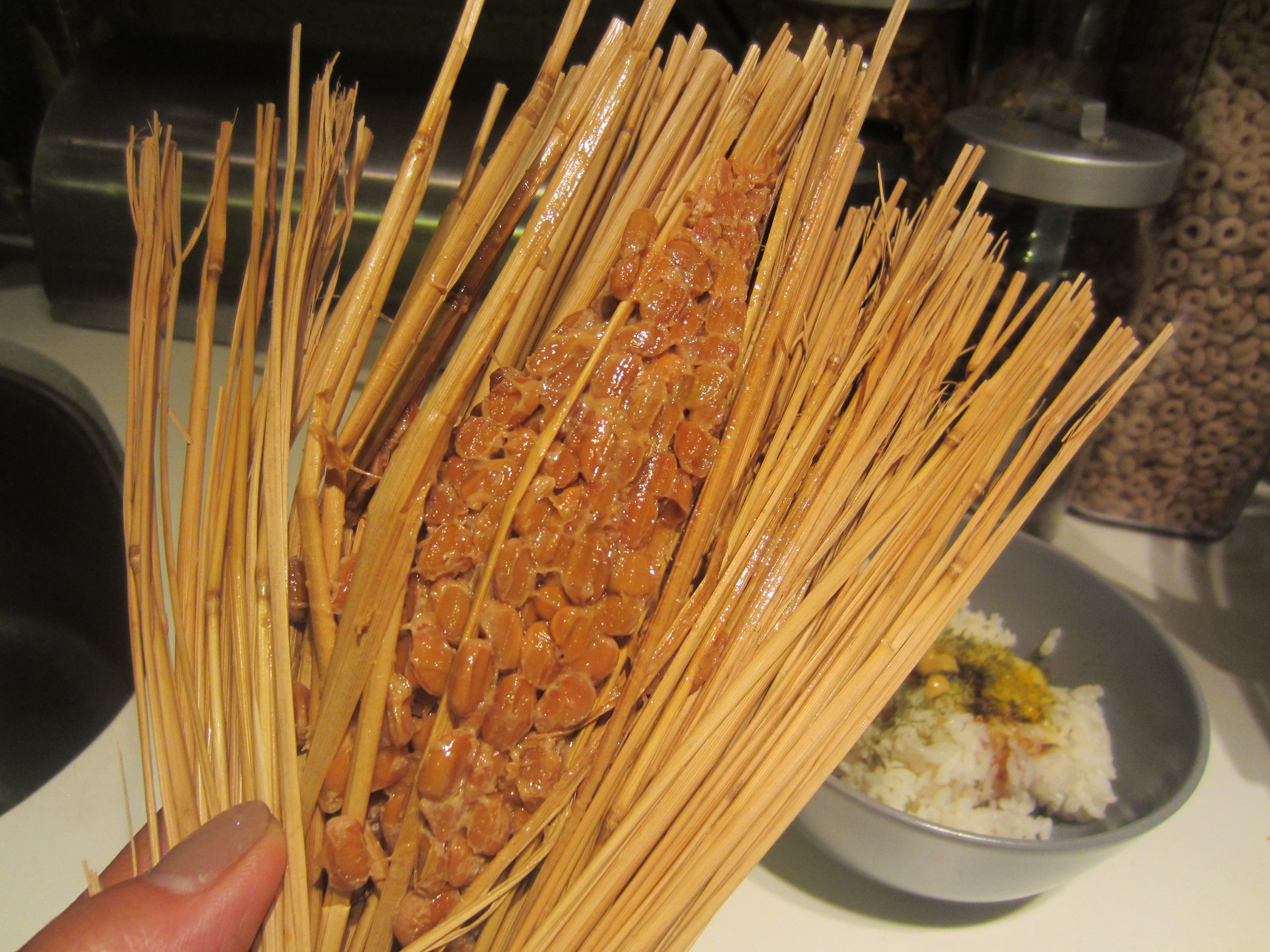 Natto wrapped traditionally in rice straw, having survived a trans-Pacific flight and avoided TSA, wonderfully fragrant of earth and grass.