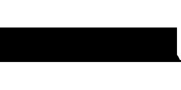 Saveur logo.png