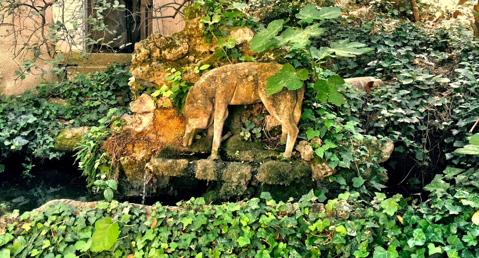 La Font du Loup, the fountain of the wolves is an ancient natural spring that flows through the property.
