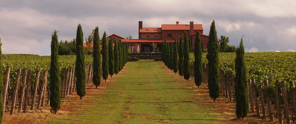 "The ""villa"" at Alloro Vineyards was designed to reflect owner David Nemarnik's Italian heritage."