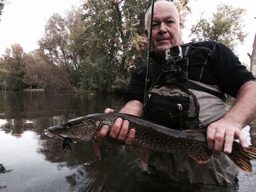 fly-fishing-the-fly-factor-guide-northern-pike.jpg