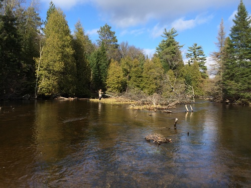 fly-fishing-the-fly-factor-wildlife-ausable-river-3.jpg