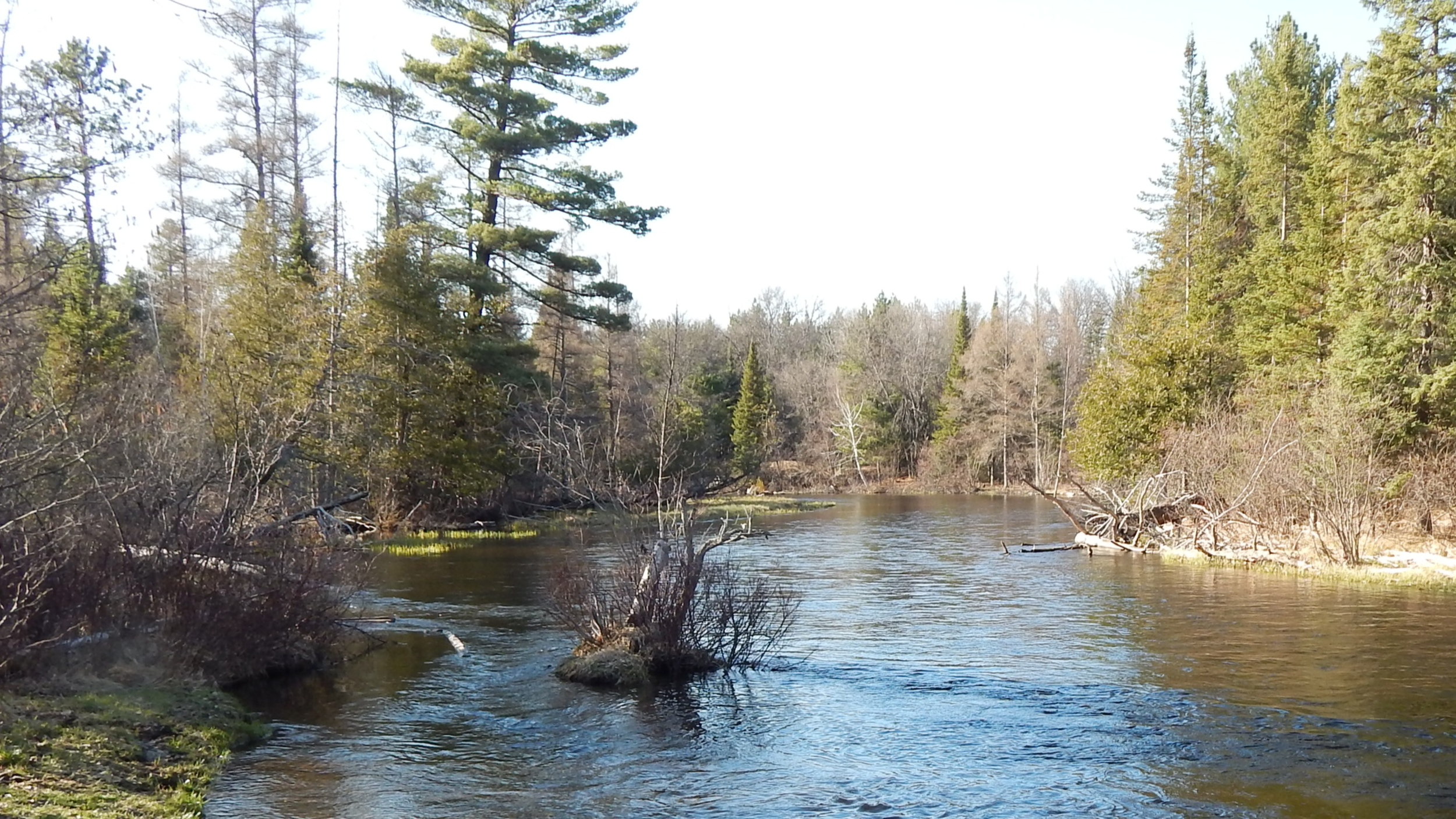 fly-fishing-the-fly-factor-wildlife-ausable-river-2.jpg