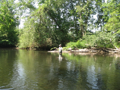 fly-fishing-the-fly-factor-wildlife-river-wading-1.jpg