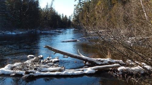fly-fishing-the-fly-factor-wildlife-river-winter.jpg