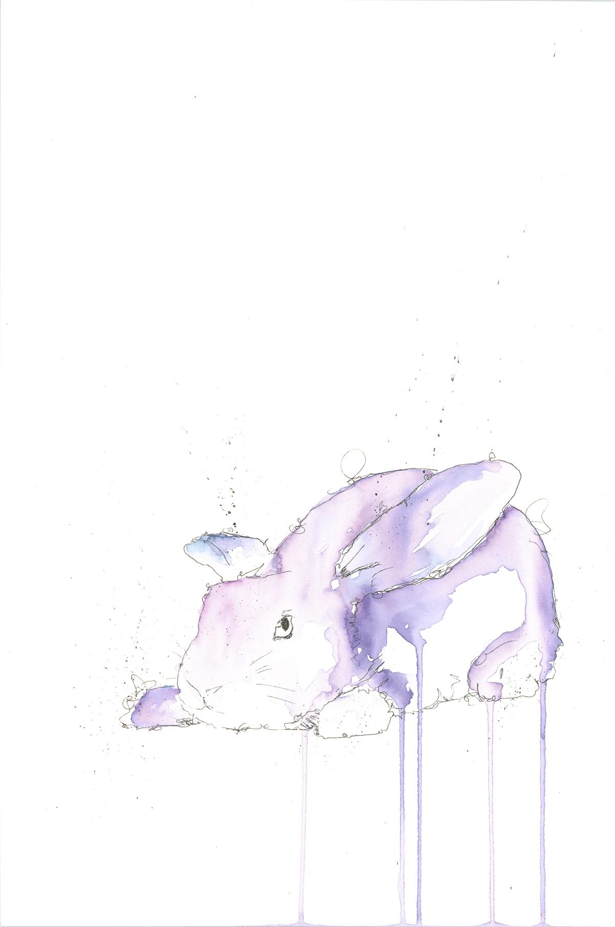 rabbit adj.jpg