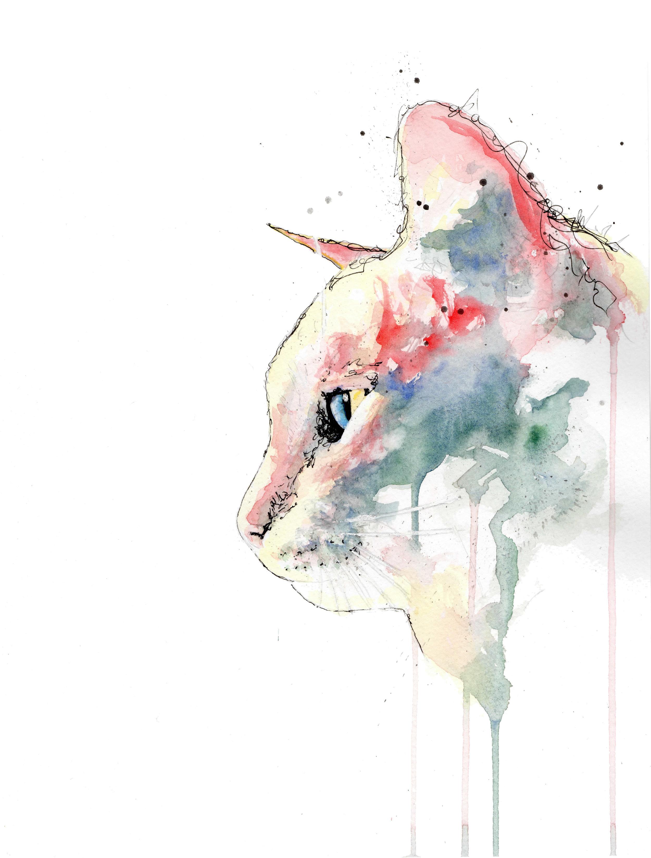 red cat no background.jpg