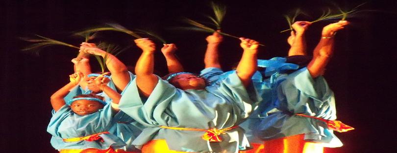 Diamano Coura West African Dance Company-  photo: Wanda Sabir