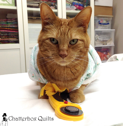 "Charlie almost ""fooled"" me into believing he is a quilter!"