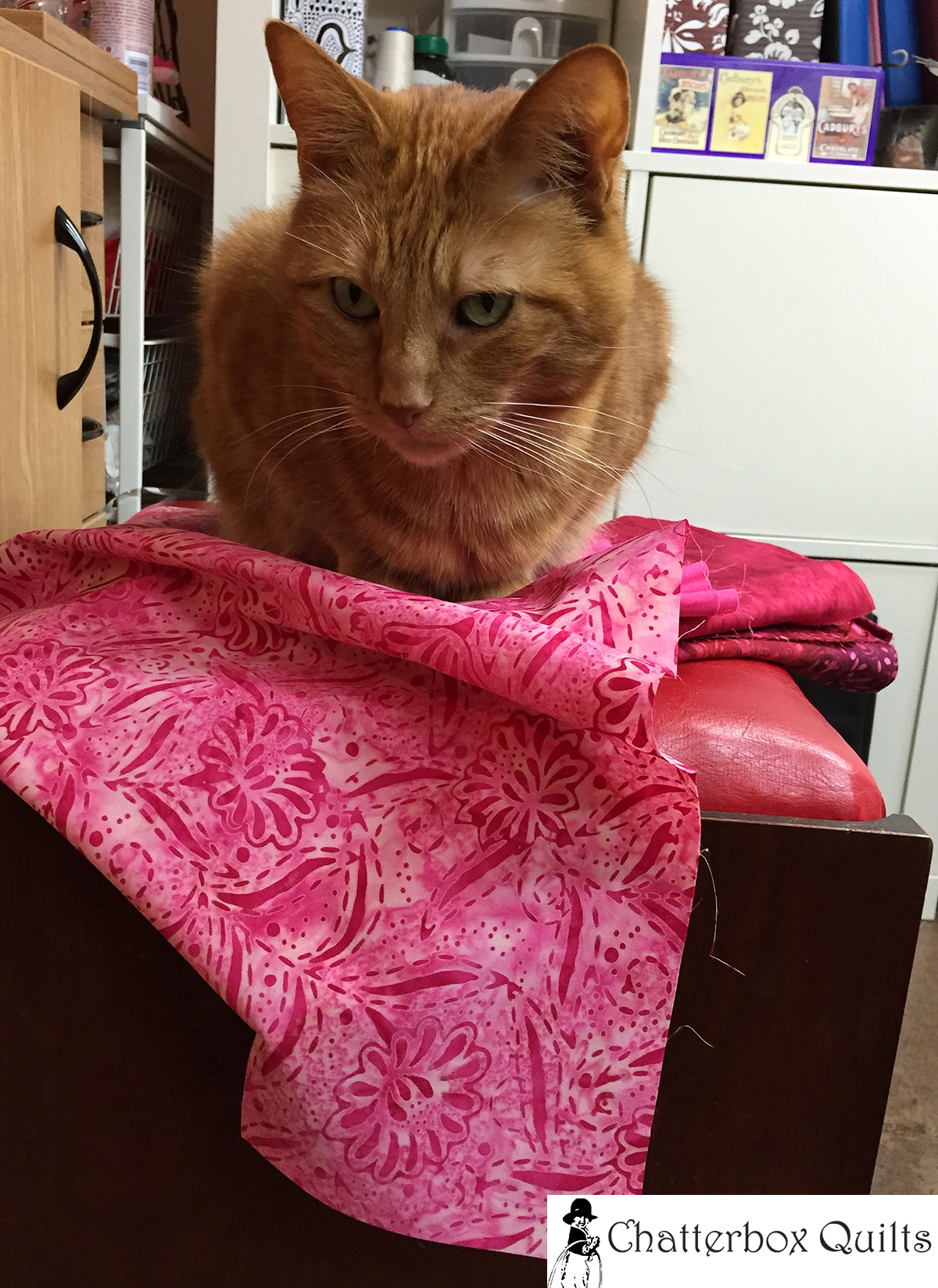 Charlie helped in the fabric selection for this project