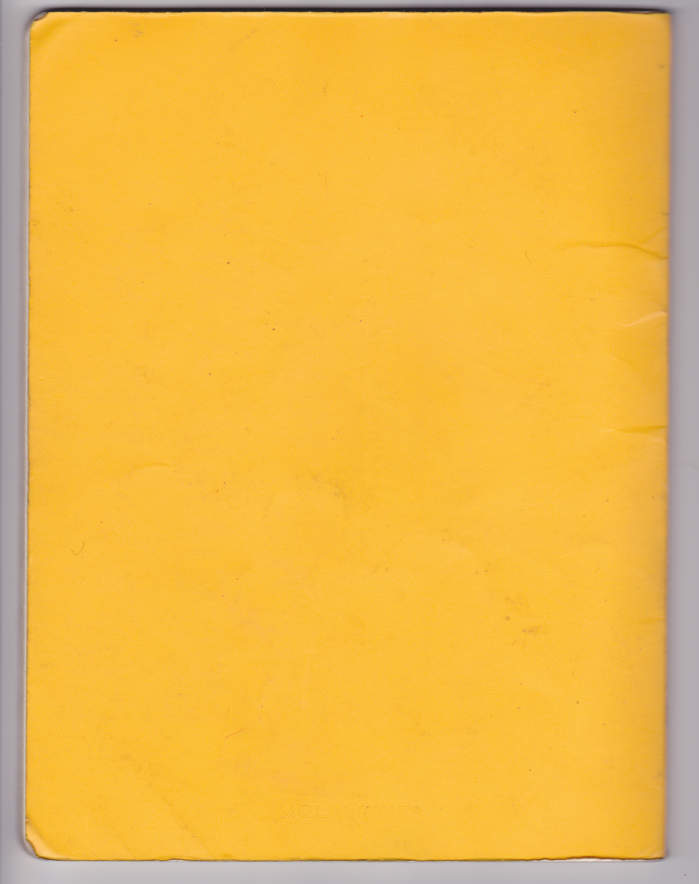 Yellow Back Cover.jpeg