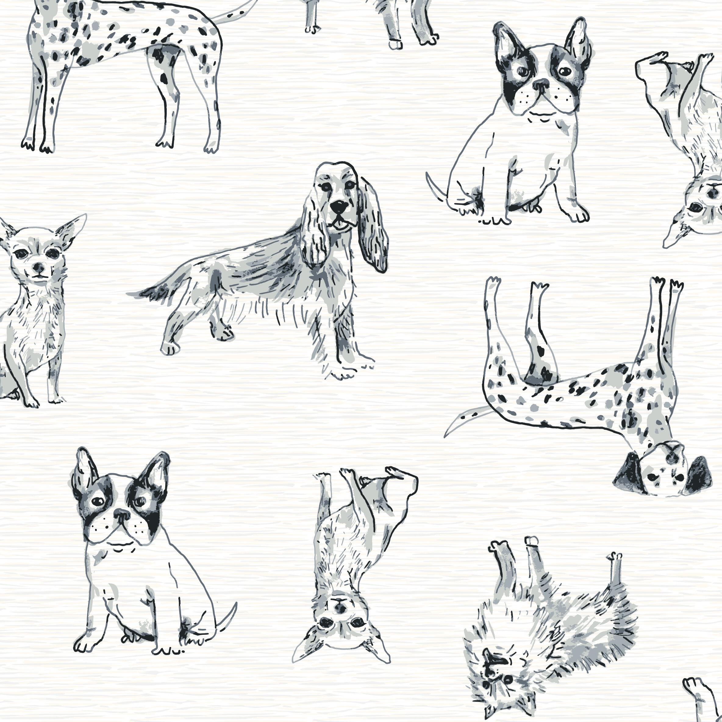 Dog Show-S410-01.jpg
