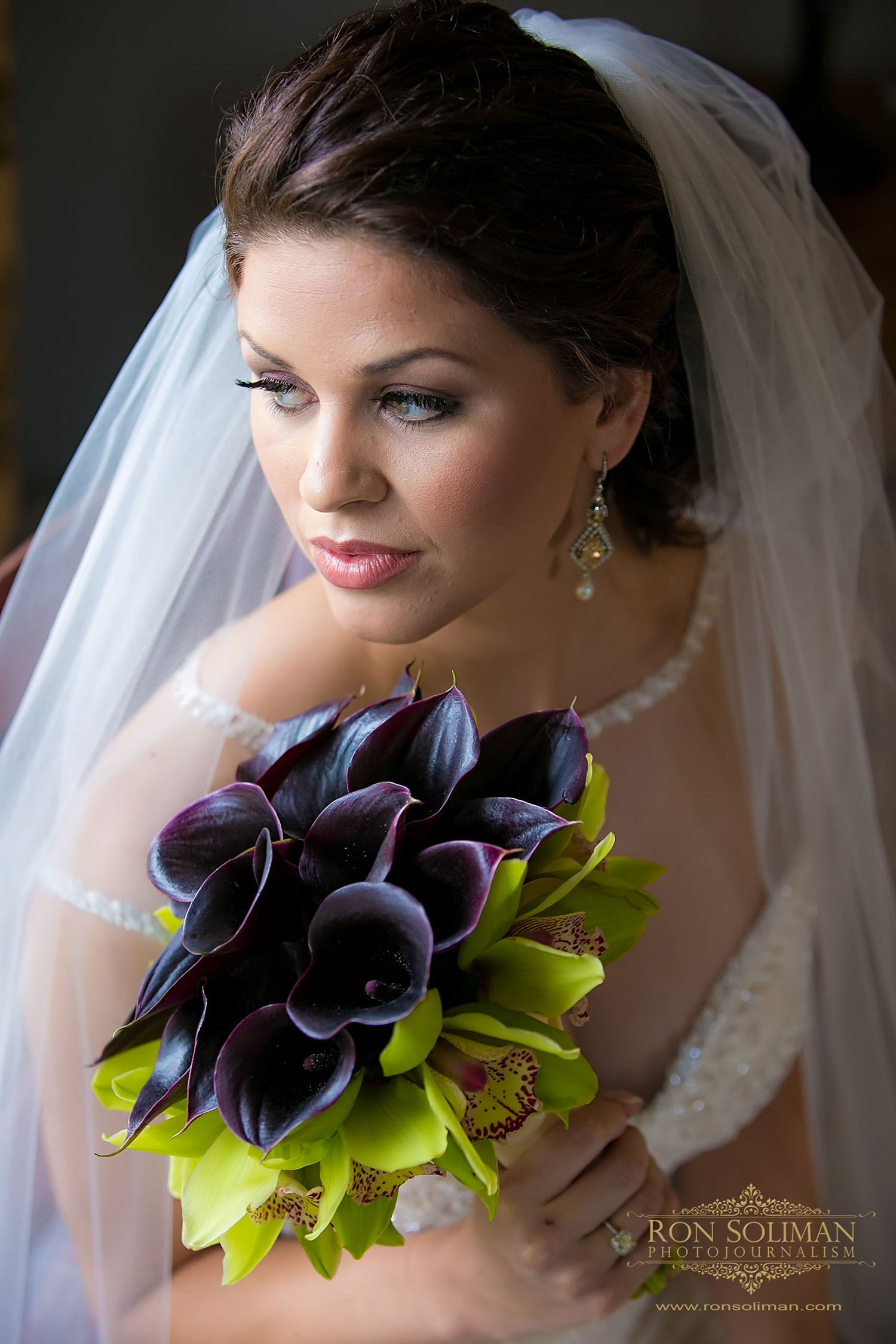 Ron SolimanPhotojournalism  | Wedding Reception | Sweetwater Farm, Glen Mills, PA