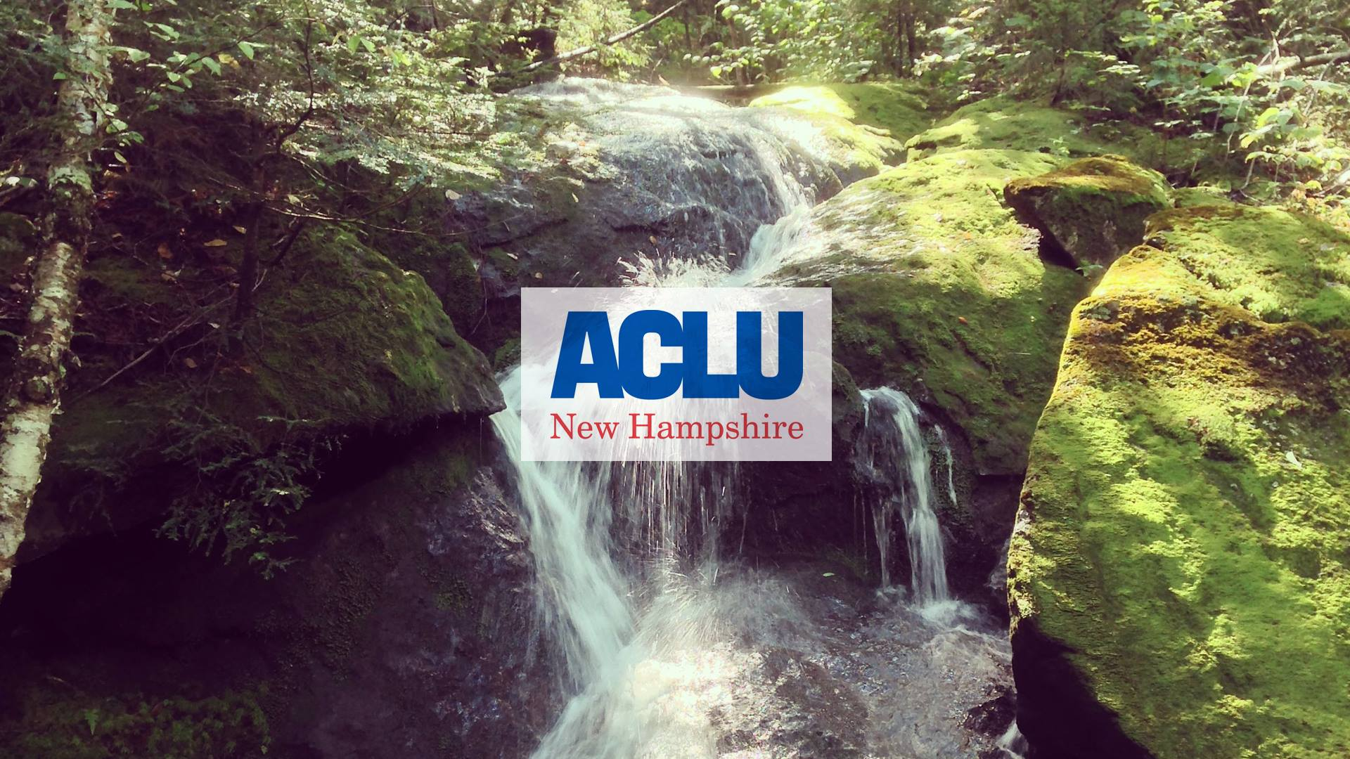 ACLU NH - Know your rights