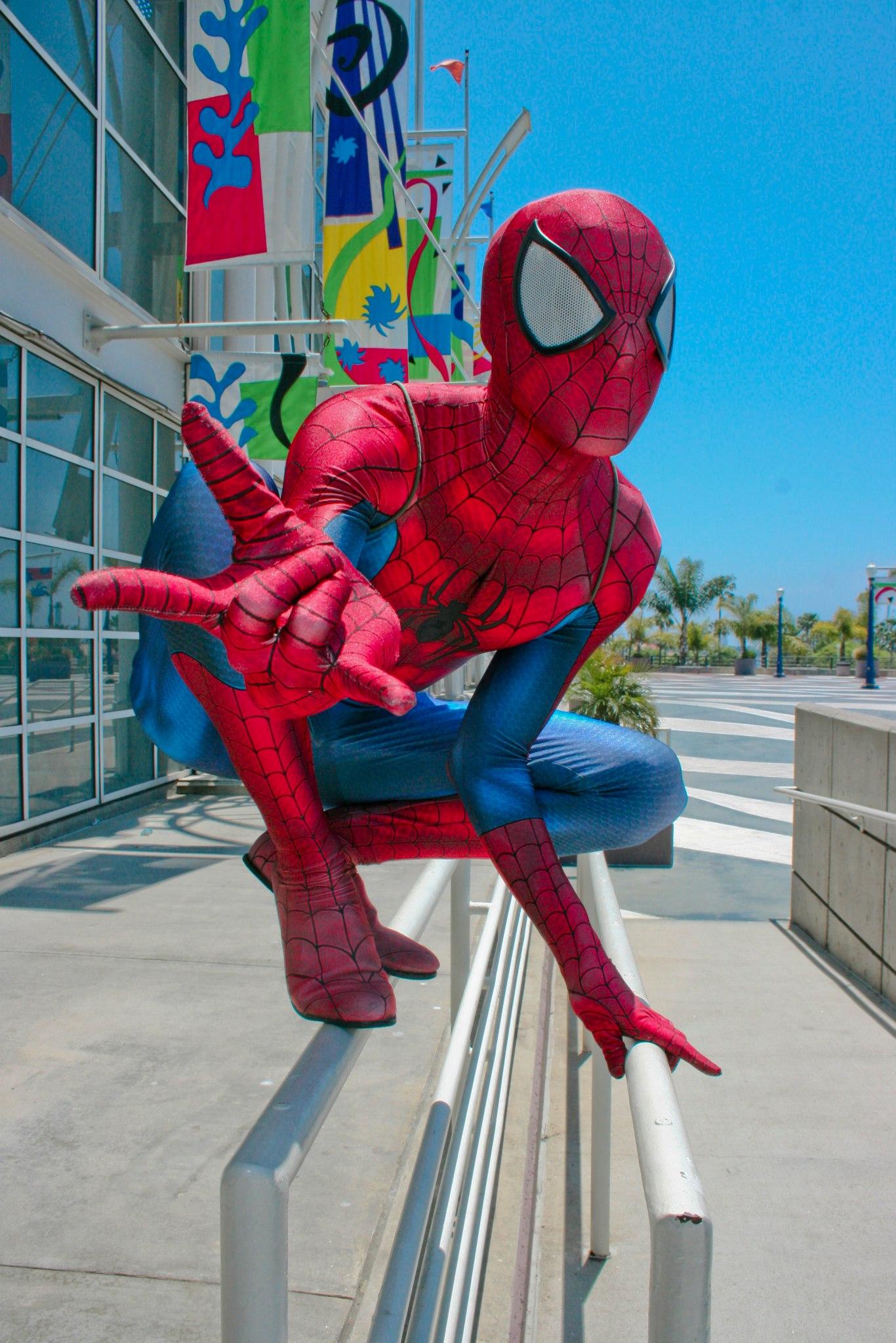 Spider-Hero.jpg