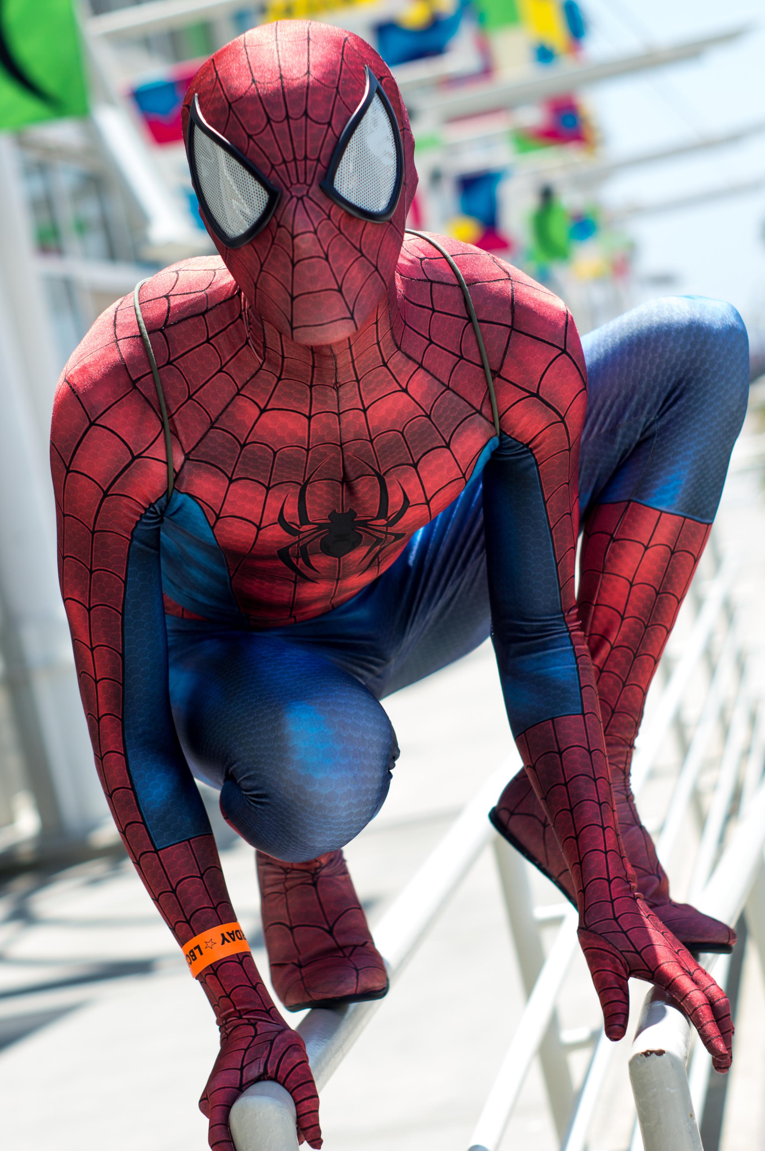 Spiderhero2.jpg
