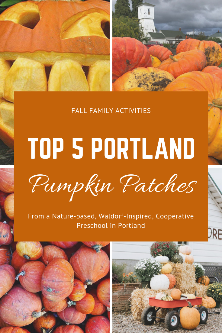 top-5-portland-pumpkin-patches