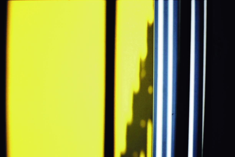 yellowtoibooks.jpg