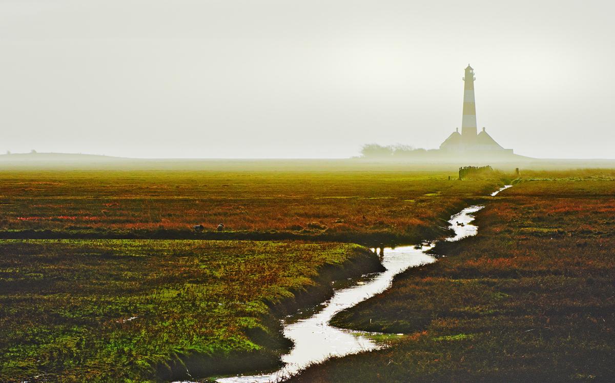 201302  morning mist at lighthouse 0591 sh sRGB.jpg