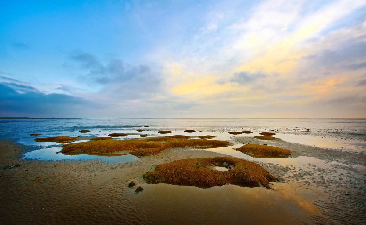 201201  small isles at beach 4452 sh sRGB.jpg