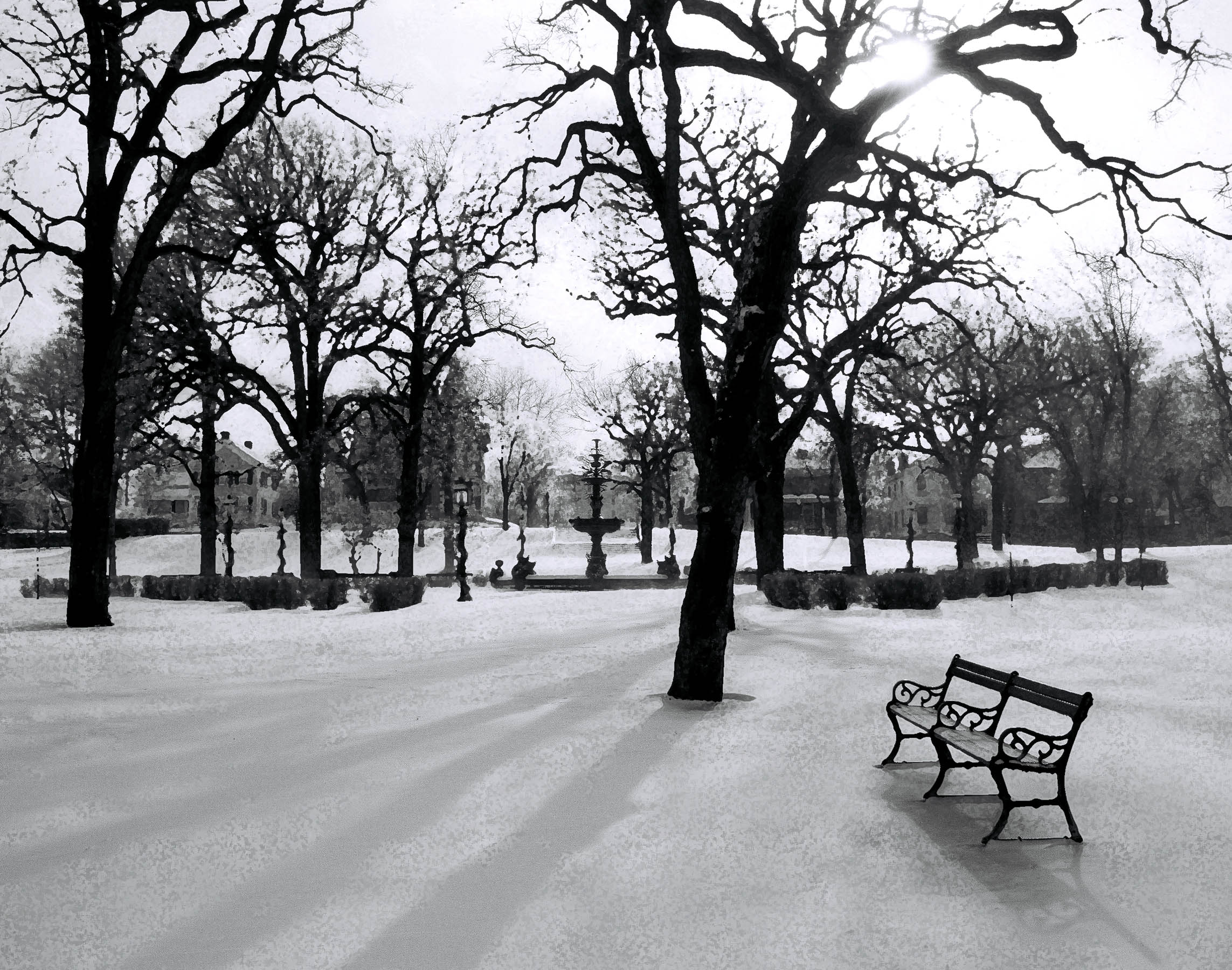 23.. WINTER.SNOW.jpg