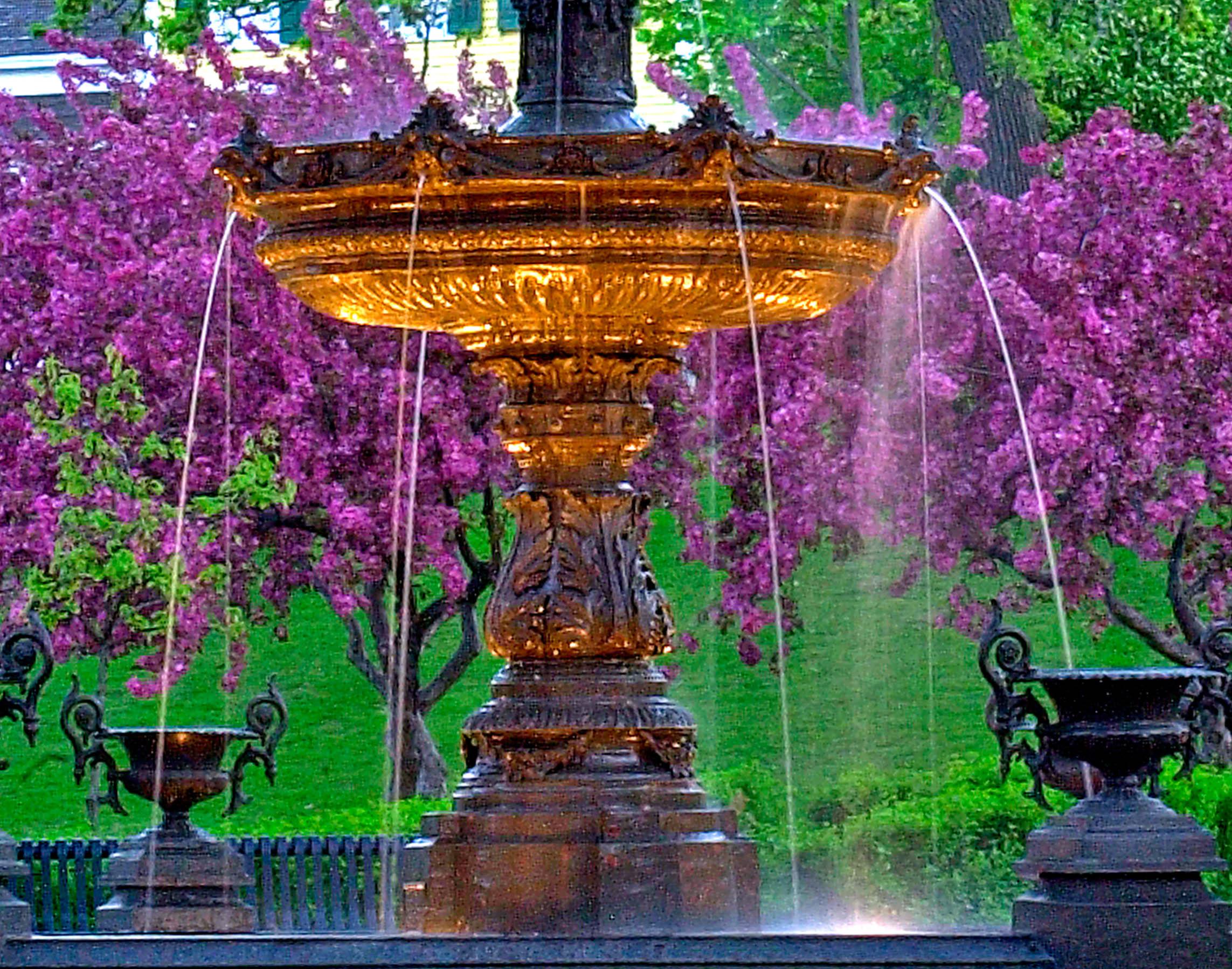 62.Spring fountain A2.jpg