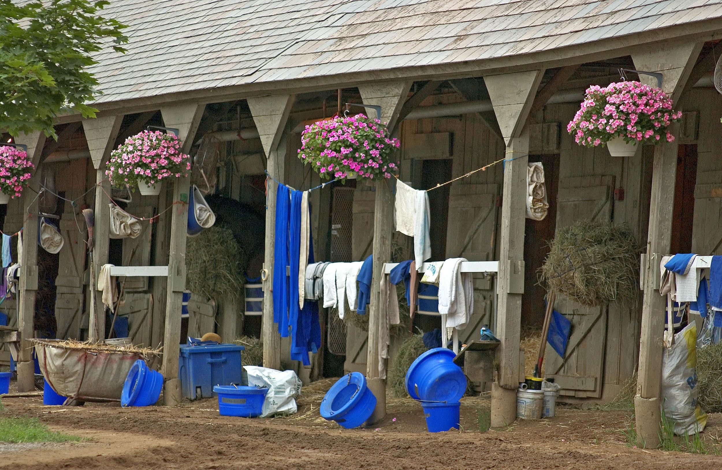 Blue stable MASTER.jpg