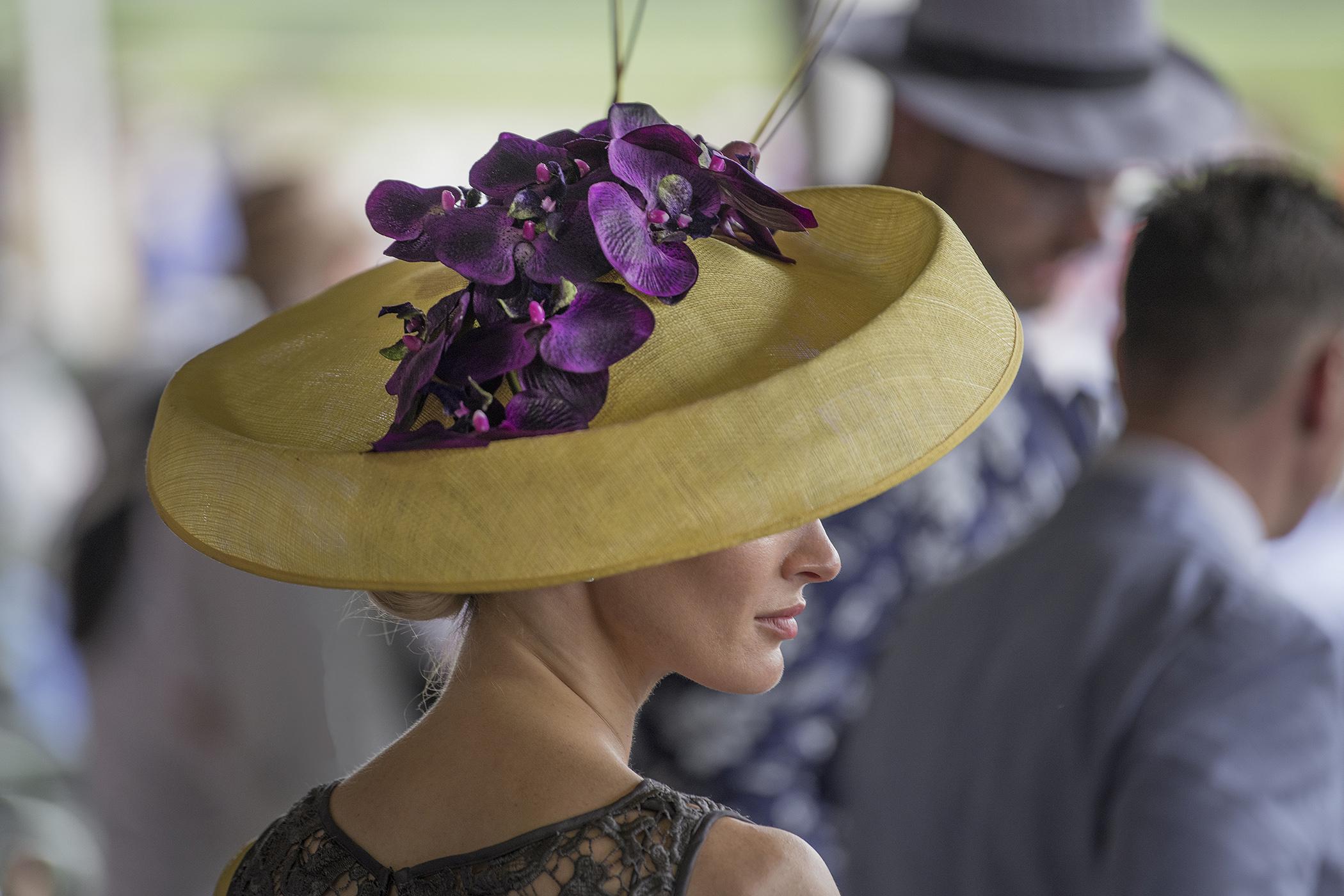 Hat Orchids_8192.jpg