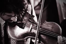 quinn fiddle.jpg