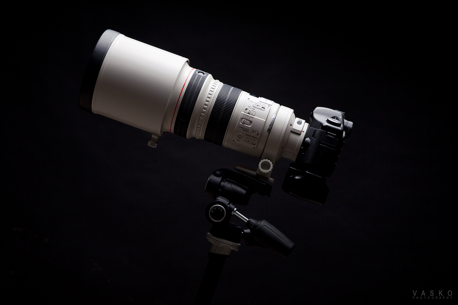 Canon 300mm f2.8L IS USM I 5D Classic - Vasko Photography