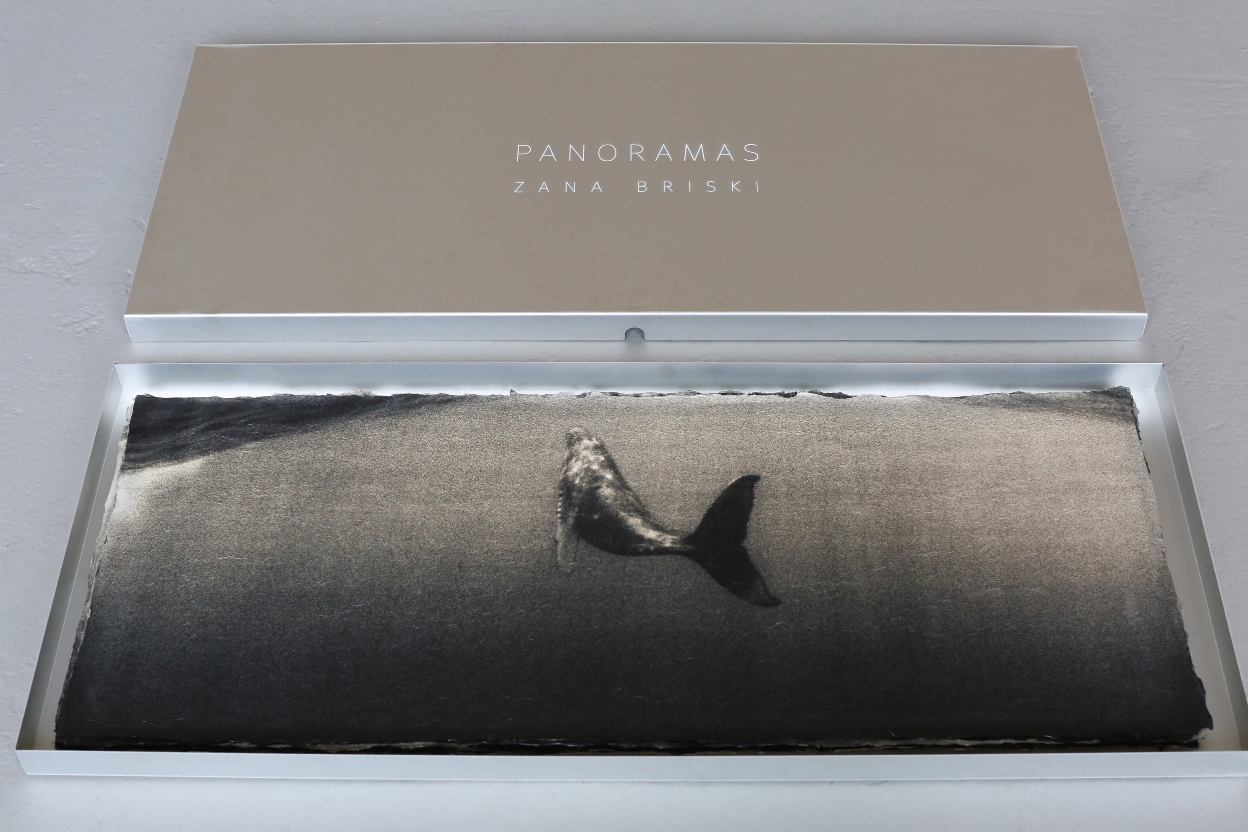 Humpback whale , collector's box.  Archival pigment print on handmade Japanese Kozo,  15 x 38 inches.